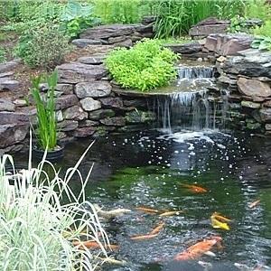 Nykomna Trädgård Fontän Pumpar Boyu - Bevattningsteknik - Bevattning BP-58